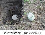 Small photo of Apply ammonium nitrate as fertilizer. Ammonium nitrate fertilizer for fruit tree planting.