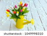 bouquet of tulips flowers in... | Shutterstock . vector #1049998310