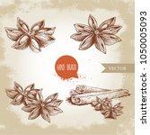 anise star sketches set. single ... | Shutterstock .eps vector #1050005093