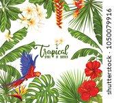 template of poster  banner ... | Shutterstock .eps vector #1050079916