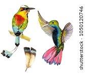 bright tropical birds in a... | Shutterstock . vector #1050120746