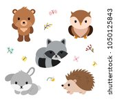 woodland animals and decor... | Shutterstock .eps vector #1050125843