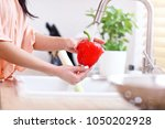 young woman washing red bell... | Shutterstock . vector #1050202928