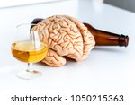 human brain with alcohol drinks ... | Shutterstock . vector #1050215363