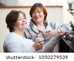 couple of elderly female... | Shutterstock . vector #1050279539