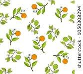 orange and bergamot branches... | Shutterstock .eps vector #1050308294