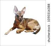 dog that terrier vector... | Shutterstock .eps vector #1050316388