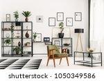vintage armchair  metal shelf... | Shutterstock . vector #1050349586