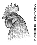 rooster head portrait... | Shutterstock .eps vector #1050400508