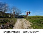 Railroad Level Crossing In The...