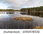 uath lochan at glen feshie in...   Shutterstock . vector #1050478520