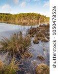 uath lochan at glen feshie in...   Shutterstock . vector #1050478526