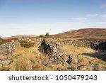 abandoned sheep pens on dava...   Shutterstock . vector #1050479243