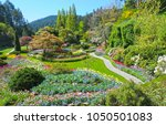 Lawn And Flower Beds In The...