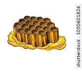 honeycomb vector drawing. hand... | Shutterstock .eps vector #1050601826