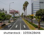 street in miraflores district ... | Shutterstock . vector #1050628646
