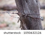 barbed wire fence wood post...   Shutterstock . vector #1050632126