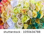 colorful design pattern of... | Shutterstock . vector #1050636788