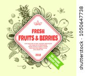 fresh fruits and berries banner ... | Shutterstock .eps vector #1050647738