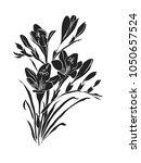 freesia silhouette vector... | Shutterstock .eps vector #1050657524
