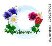 spring flower   an amemone for... | Shutterstock .eps vector #1050679028