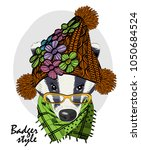 vector badger with glasses ... | Shutterstock .eps vector #1050684524