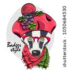 vector badger with red glasses  ... | Shutterstock .eps vector #1050684530