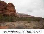 desert scene landscape agave... | Shutterstock . vector #1050684734