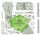 collection of lemongrass  bunch ... | Shutterstock .eps vector #1050687443