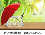 insurance concept  empty... | Shutterstock . vector #1050733400