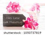 hydrangea blossom  muttertag... | Shutterstock . vector #1050737819