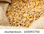 compound feed in sacks fodder... | Shutterstock . vector #105092750