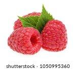 raspberries isolated on white... | Shutterstock . vector #1050995360