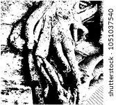 ficus banyan. silhouette. a... | Shutterstock .eps vector #1051037540