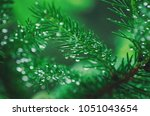 abstract background from... | Shutterstock . vector #1051043654