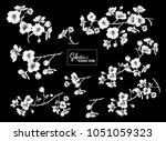 set of blooming cherry japanese ... | Shutterstock .eps vector #1051059323