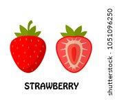 vector illustration flat... | Shutterstock .eps vector #1051096250