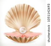 shell with pearl. clam  oyster... | Shutterstock .eps vector #1051142693