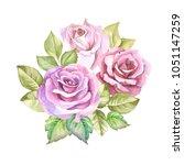 hinc watercolor roses.flowers... | Shutterstock . vector #1051147259