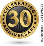 celebrating 30th anniversary... | Shutterstock .eps vector #1051198238