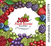 berries and berry fruits sketch ... | Shutterstock .eps vector #1051209779