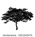 tree silhouette for brush in... | Shutterstock . vector #1051263473