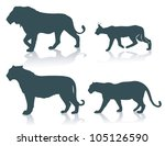 wild cats   vector illustration | Shutterstock .eps vector #105126590