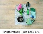 garden tools and flowers  the...   Shutterstock . vector #1051267178