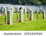 washington dc   united states   ... | Shutterstock . vector #1051344560