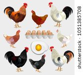 farm set with rooster  hen and... | Shutterstock .eps vector #1051385708