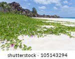 Grand Anse, La Digue, Seychelles, Africa - stock photo
