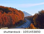 autumn in the southern... | Shutterstock . vector #1051453850