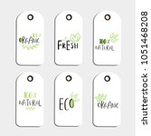 set of vector eco badge or tag  ... | Shutterstock .eps vector #1051468208