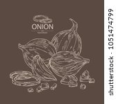 onion  rings  full onion and...   Shutterstock .eps vector #1051474799